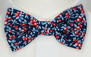 BACCARINO Navy blue bow tie