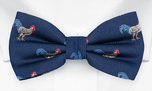 ADOODLEDOO Blue bow tie