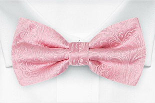 BRIDALLY Pink bow tie