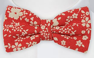 CUPIDITY Red bow tie