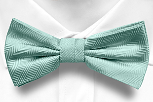 DRUMMEL Turquoise boy's bow tie