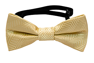 DRUMMEL Yellow baby bow tie