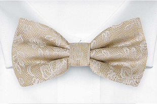 EVERAFTER Champagne gold bow tie