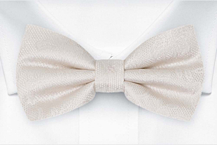 EVERAFTER Ivory boy's bow tie