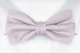 EVERAFTER Pale purple bow tie
