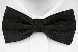 GINO pre-tied bow tie