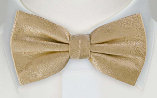 BRUD CHAMPAGNE pre-tied bow tie