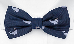 CACHALOT Blue bow tie