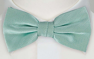DRUMMEL Turquoise bow tie