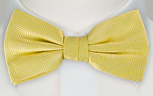 DRUMMEL Yellow bow tie