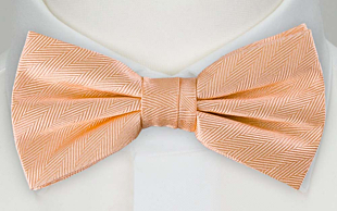 JAGGED Apricot bow tie