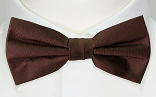 SOLID Brown bow tie