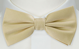 SOLID Champagne bow tie