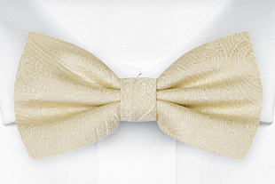 ORNATE Champagne bow tie