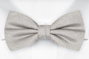 ORNATE Silver bow tie