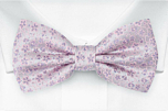 AUGURI Pale purple boy's bow tie
