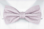 EVERAFTER Pale purple boy's bow tie