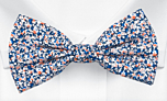 ITSYBITSY Blue pre-tied bow tie