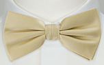 SOLID Champagne pre-tied bow tie