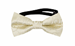 SNAZZY Champagne baby bow tie