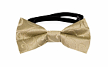 SNAZZY Gold baby bow tie
