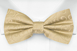 SNAZZY Gold boy's bow tie