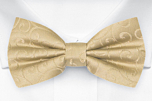 SNAZZY Gold pre-tied bow tie